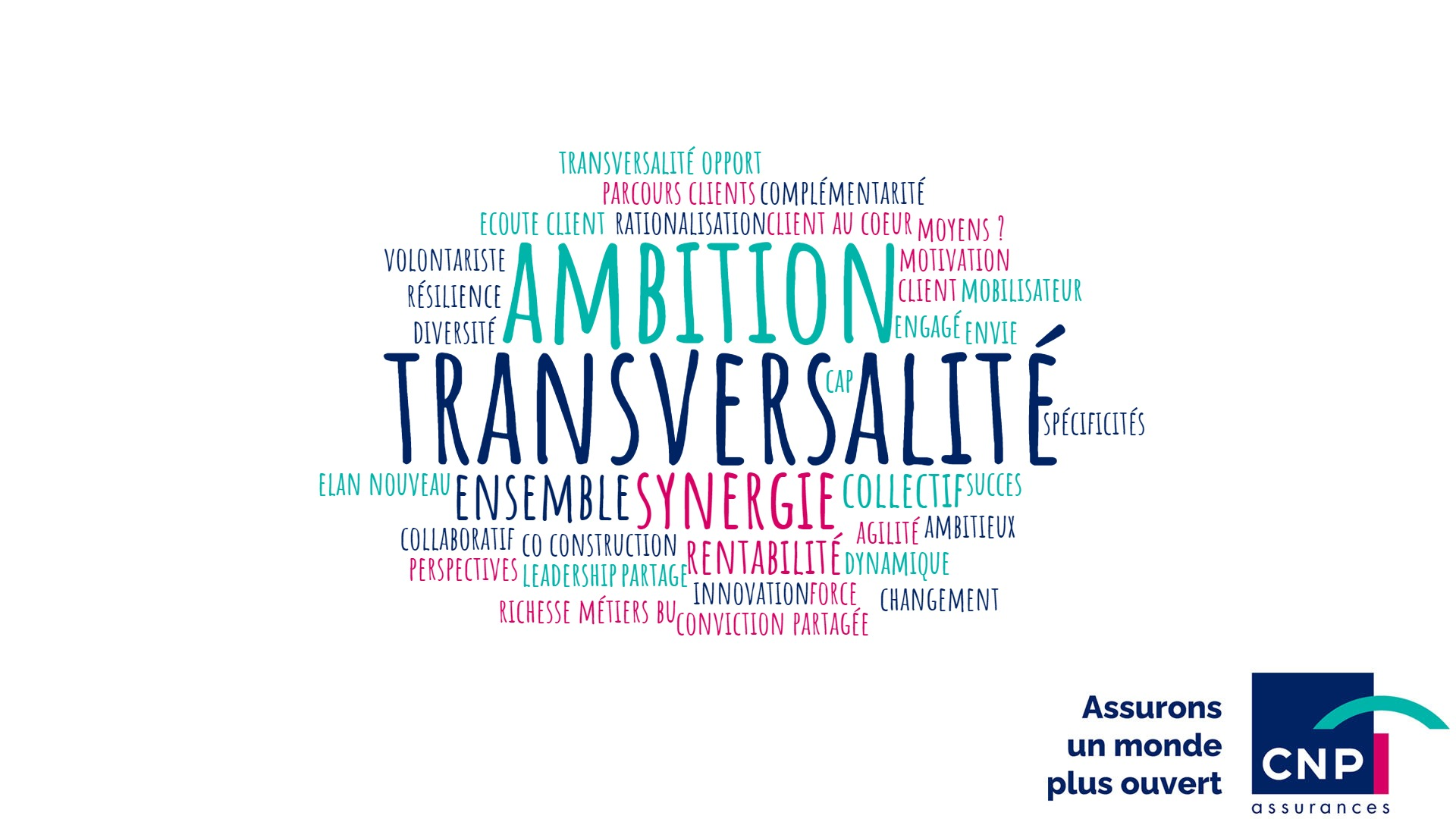 Animation visioconférence séminaire CNP